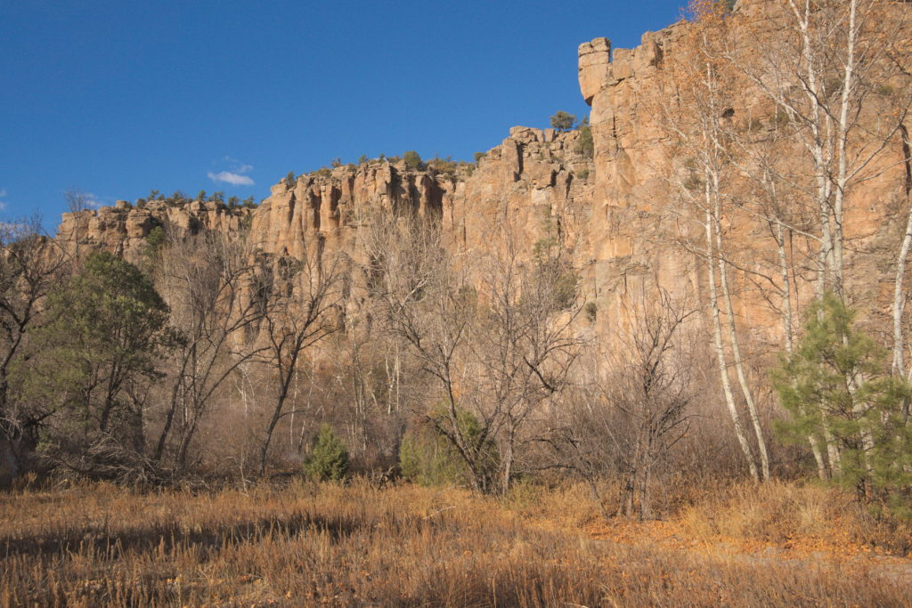 West Fork of the Gila River Canyon, New Mexico