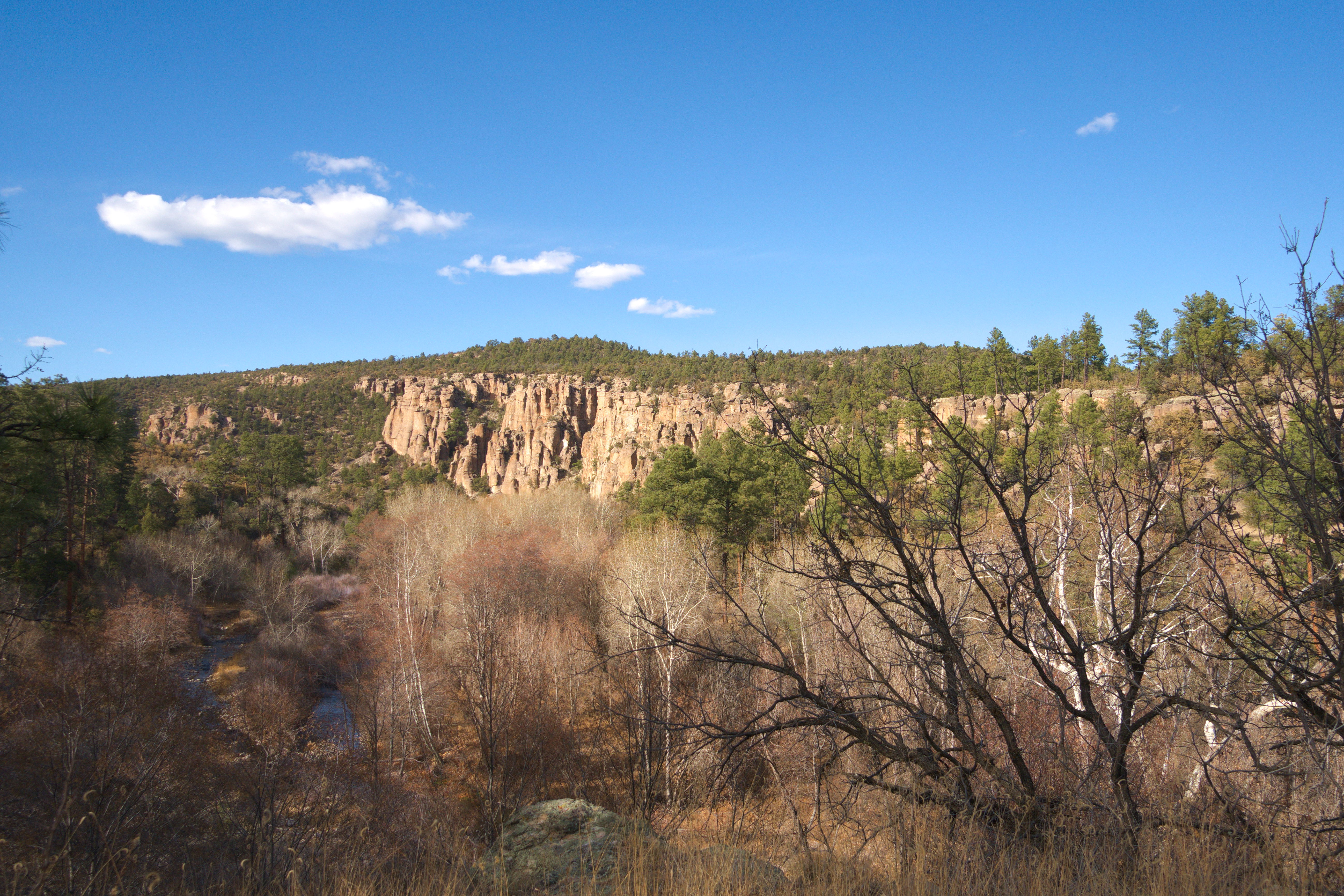 West fork of the Gila River in the winter