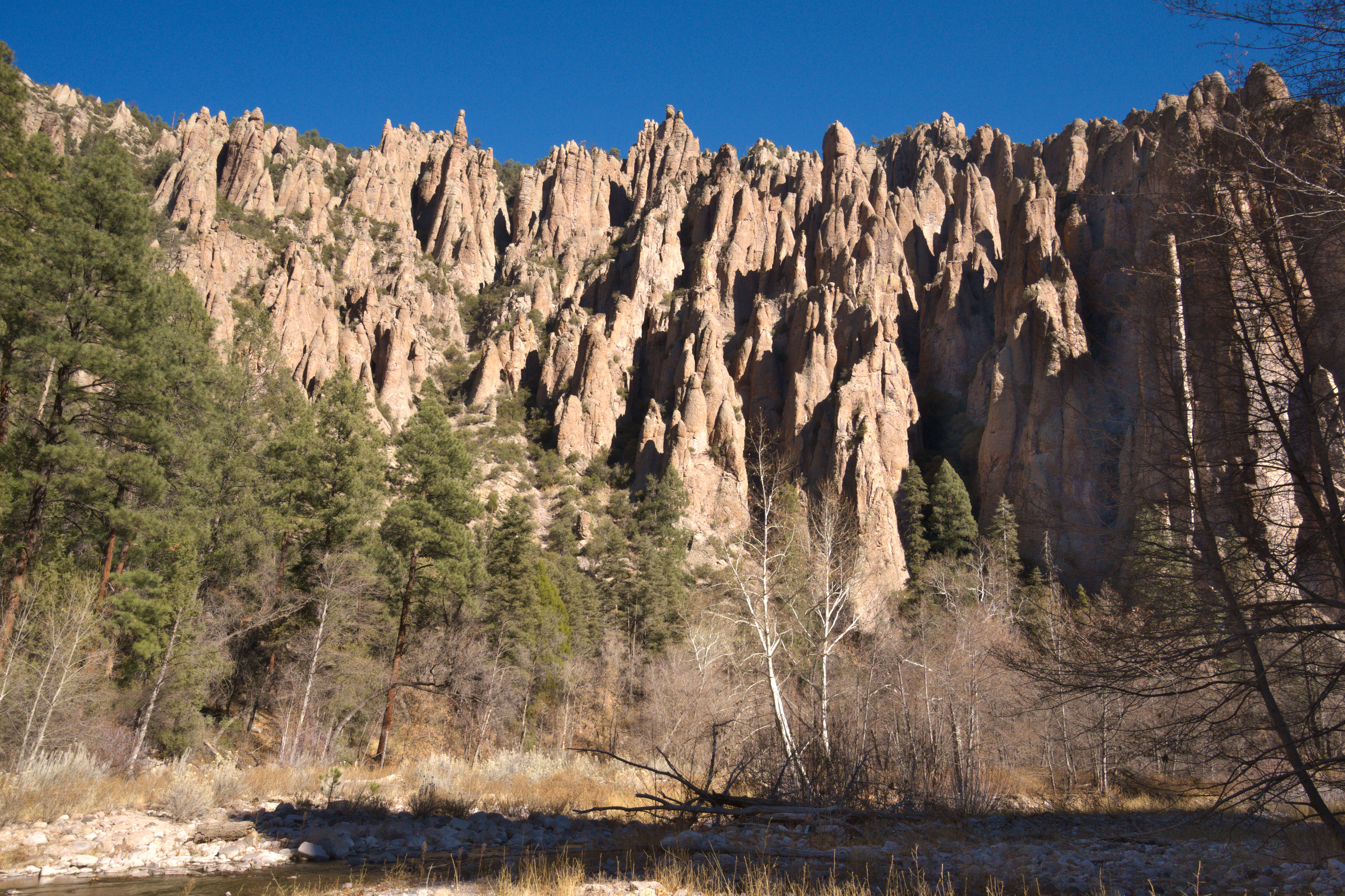 Teeth like rock spires on the West fork of the Gila River, New Mexico