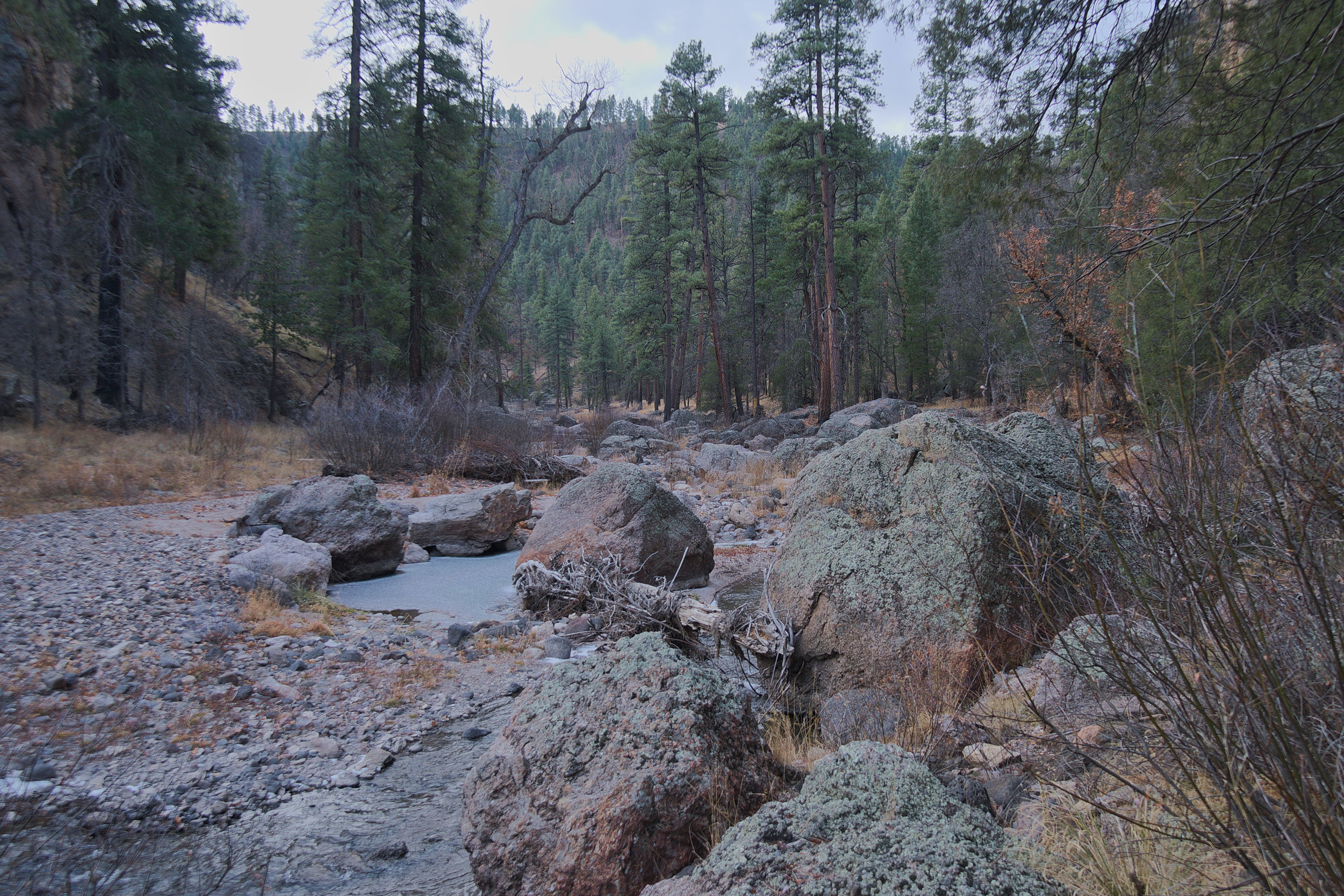 The West Fork of the Gila River in the winter